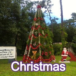 Christmas Florida Homes for Sale