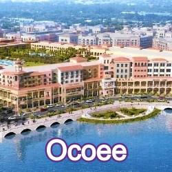 Ocoee Florida Homes for Sale