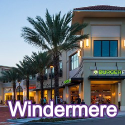 Windermere Florida Homes for Sale