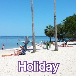 Holiday Florida Homes for Sale