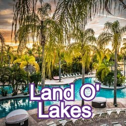 Land O' Lakes Florida Homes for Sale