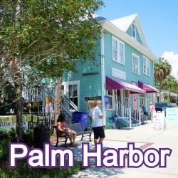 Palm Harbor Florida Homes for Sale