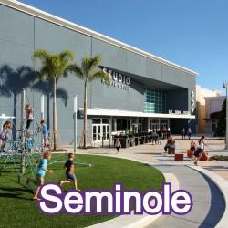 Seminole Florida Homes for Sale