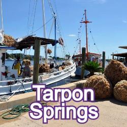 Tarpon Springs Florida Homes for Sale