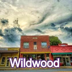 Wildwood Florida Homes for Sale