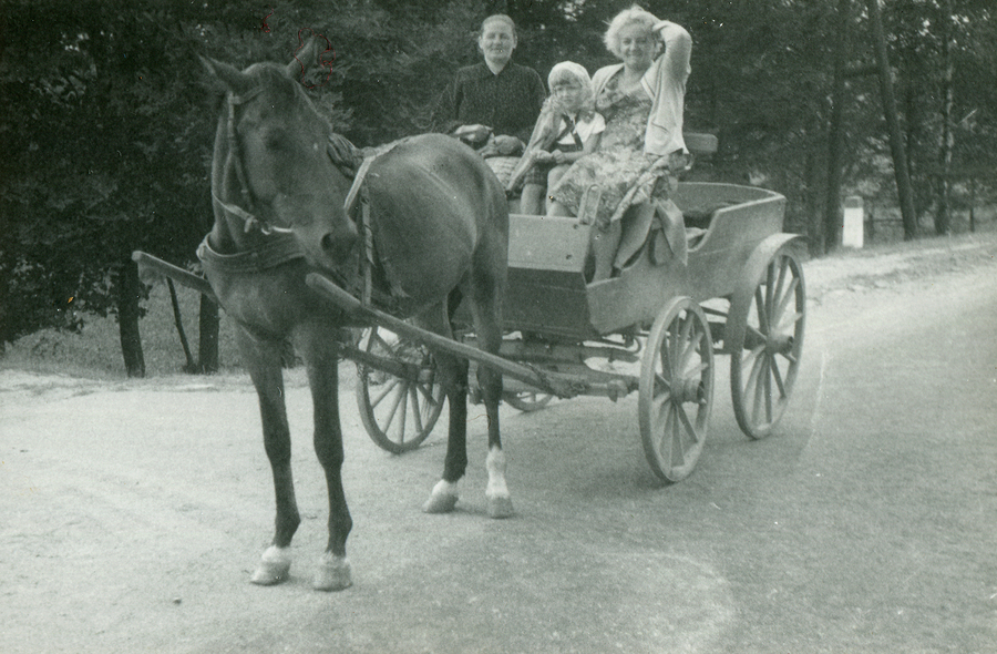 See carriages near Nassau homes and Long Island real estate.