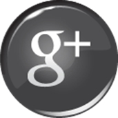 Wellington Realtor Google Plus + Button