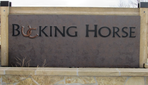 Bucking Horse Homes For Sale