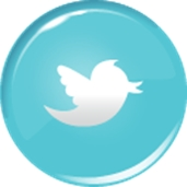 Wellington Realtor Twitter Button