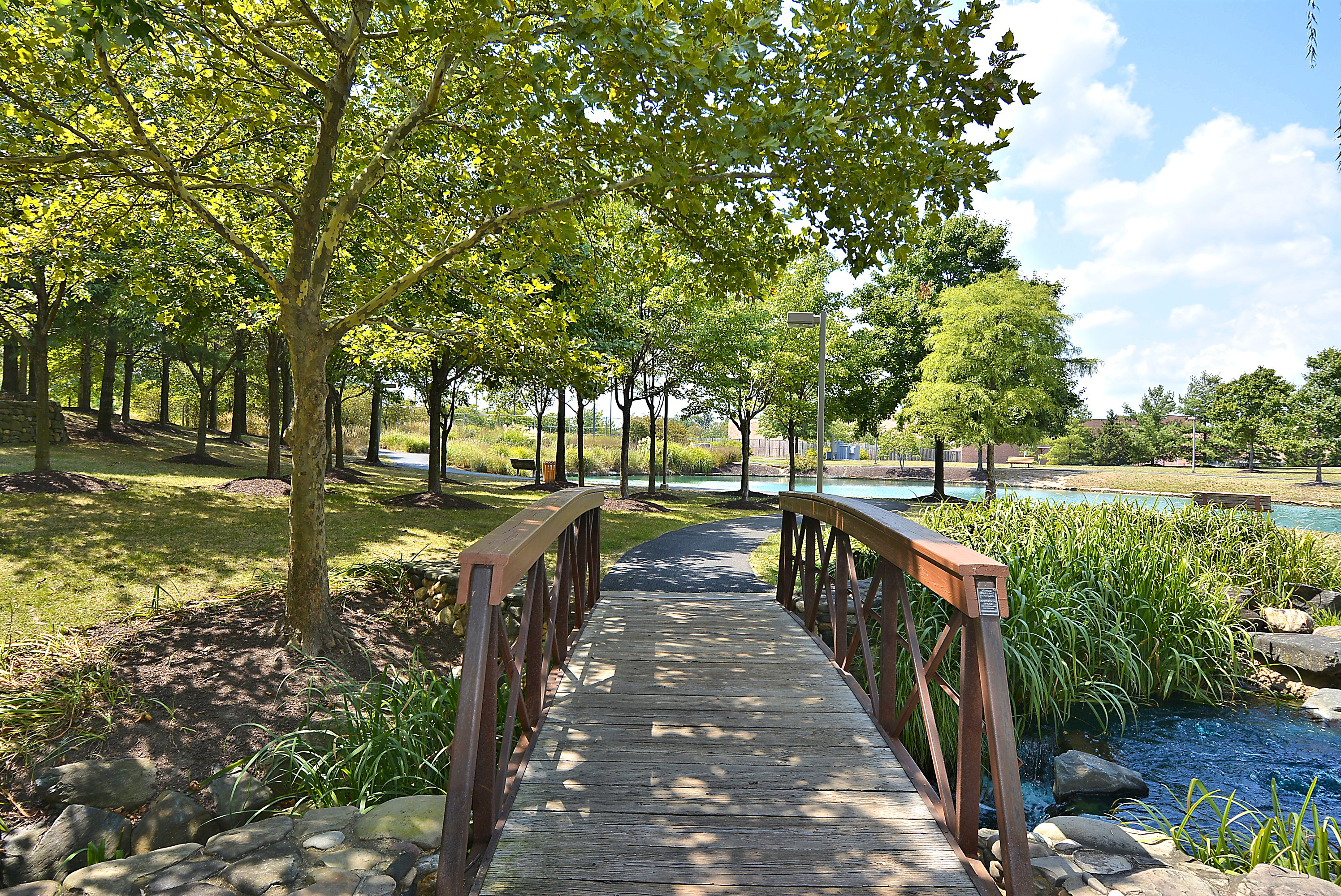 Piney Orchard Walking Trails
