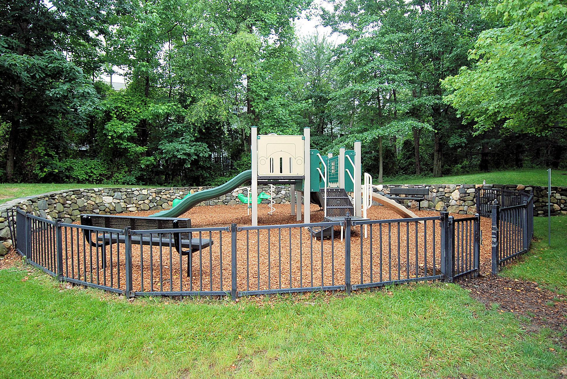 Piney Orchard playground