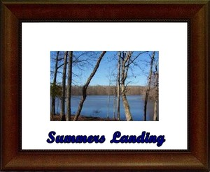 Summers Landing Homes Site Image