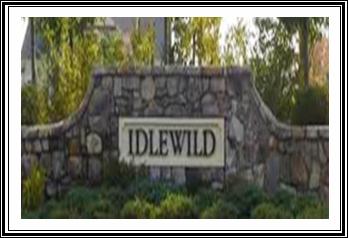 Village of Idlewild Real Estate Blog Entrance Image
