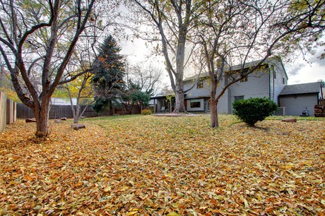 3376 S. Newport Street in Wellshire Heights at Denver, CO 80224