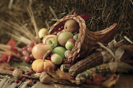 Warmest Thanksgiving Wishes