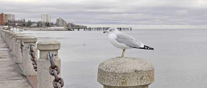 The Best Waterfront Neighbourhoods in Burlington, Ontario