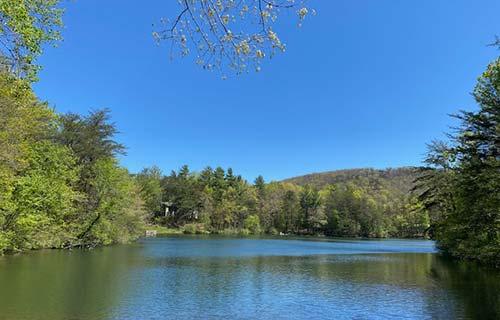 pristine lake in north georgia