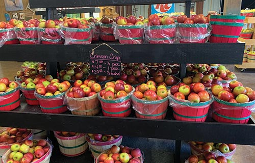 fruit stand in blue ridge mountains