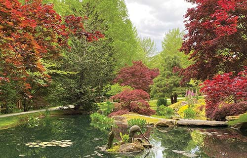 beautiful autumn in north georgia