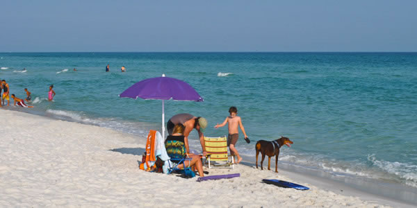 Beach Dog Park In Pensacola Fl