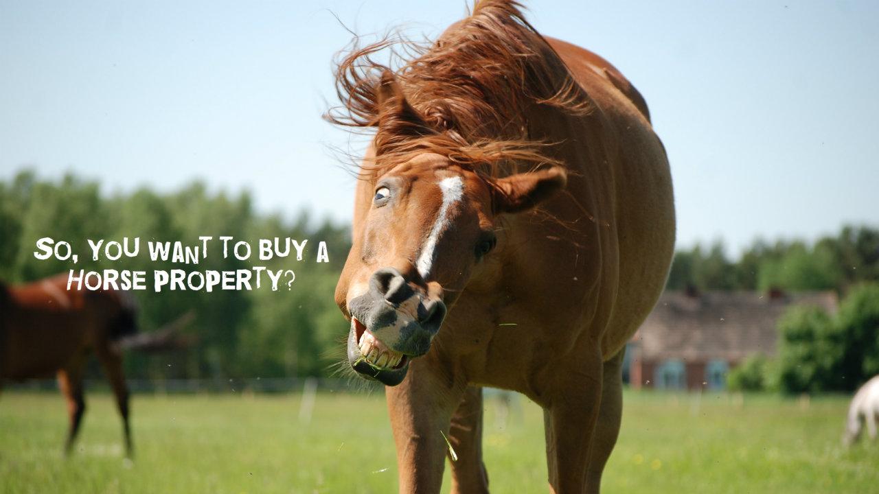 Horse Property For Sale Laveen Az