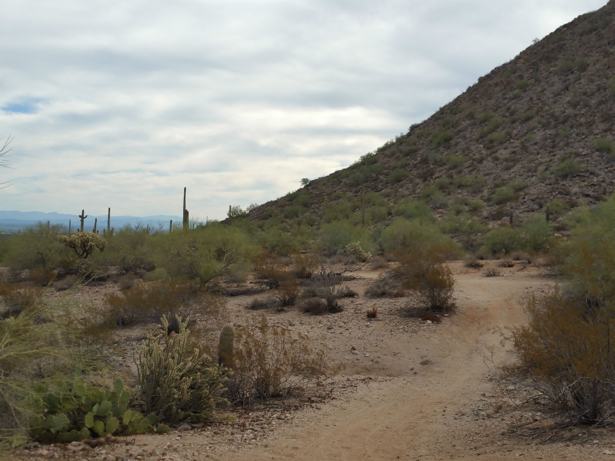 San Tan Mountain Trail