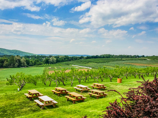 The Fishkill Farms Apple Orchard