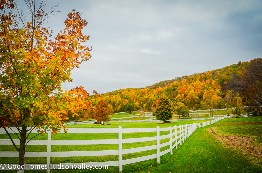 Horse farm in Patterson New York