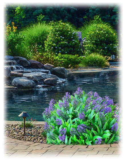 Hudson Valley Landscaping and gardening