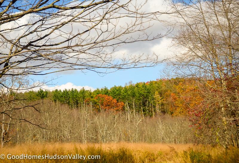 Ward Pound Ridge Reservation in Westchester New York