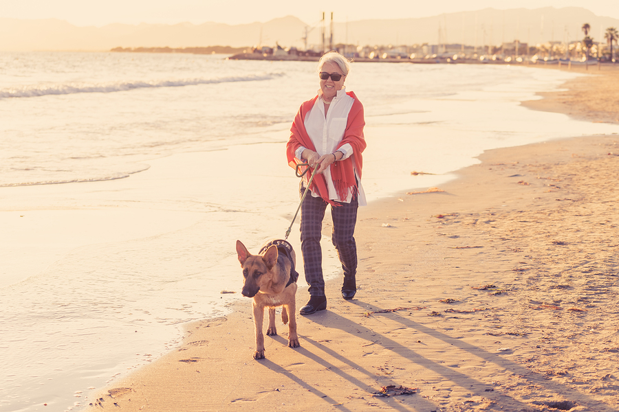 Ocean Beach homes are great for pet lovers.