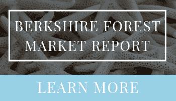 Berkshire Forest Market Report | Ashley DeLong, Realtor