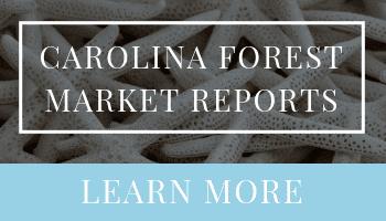 Carolina Forest Market Report Homes | Ashley DeLong, Realtor