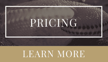 Intelligent Pricing Strategy | Ashley DeLong, Realtor