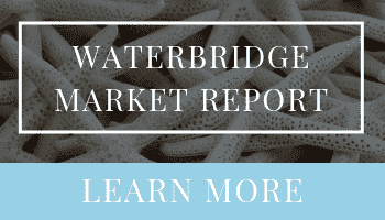 Waterbridge Market Report