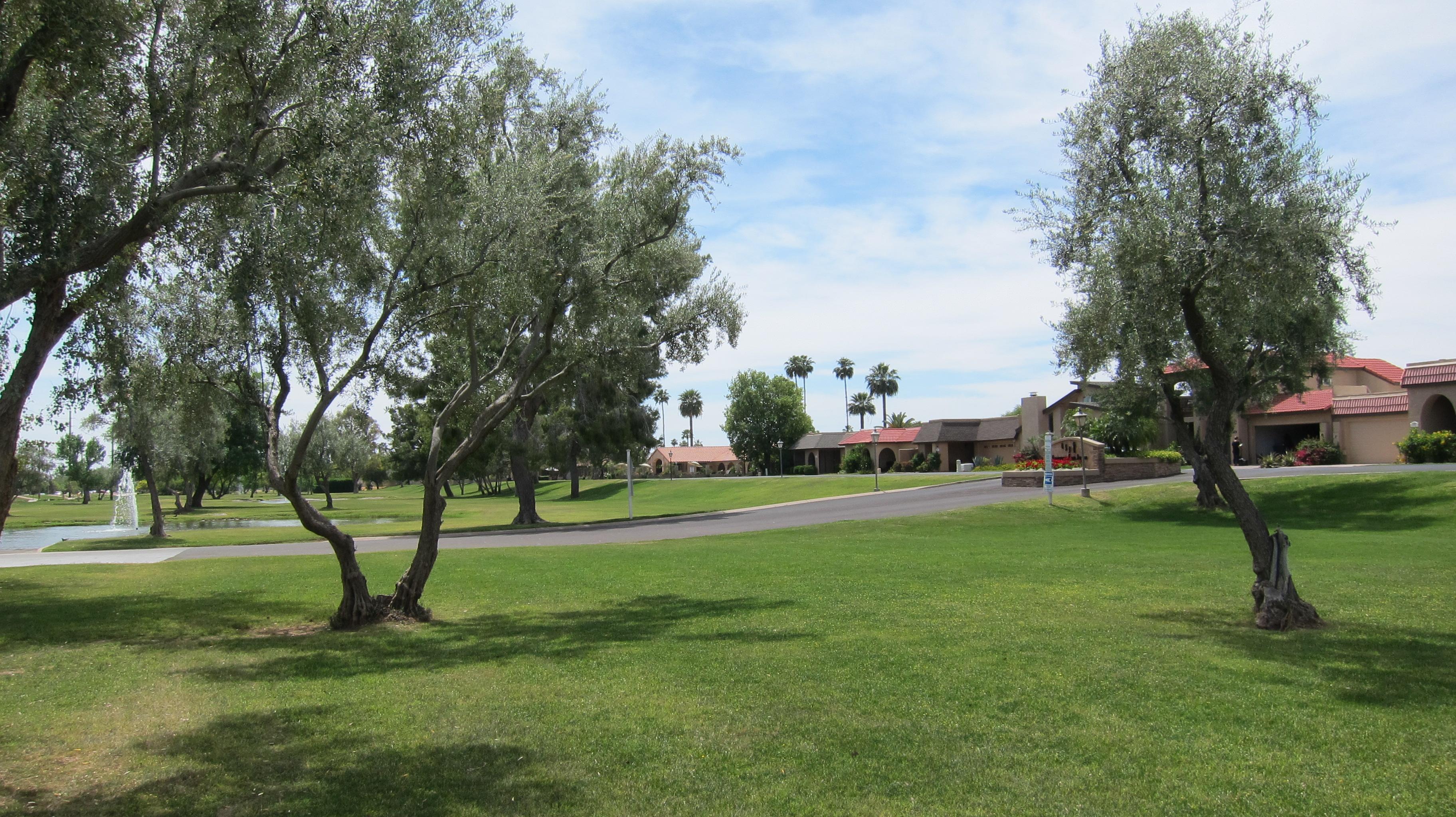 Laguna San Juan Scottsdale