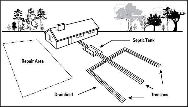Septic System field