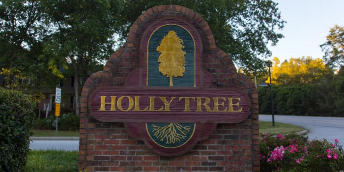 Homes in Holly Tree Plantation