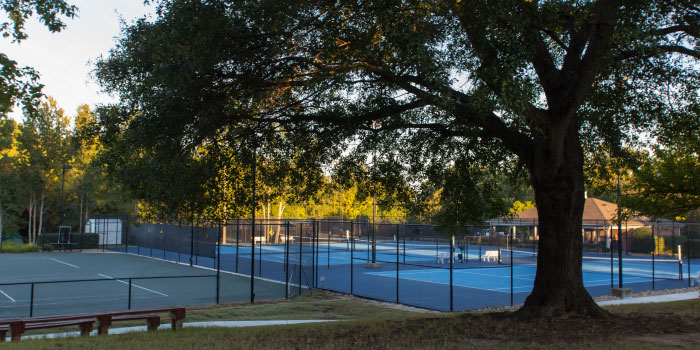 Tennis Courts in Holly Tree Plantation