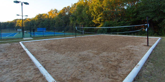 Volleyball Court in Orchard Farms