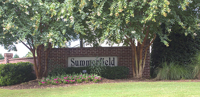 Homes for Sale in Summerfield, Greenville SC