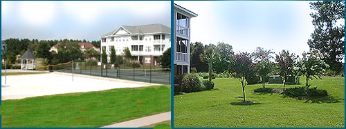 Tennis and Volleyball at Ironwood Resort