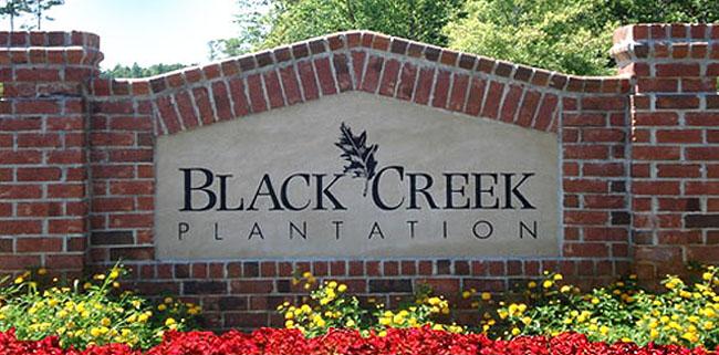 Homes for Sale in Black Creek Plantation