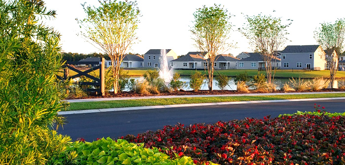 Lakefront Homes in The Parks of Carolina Forest