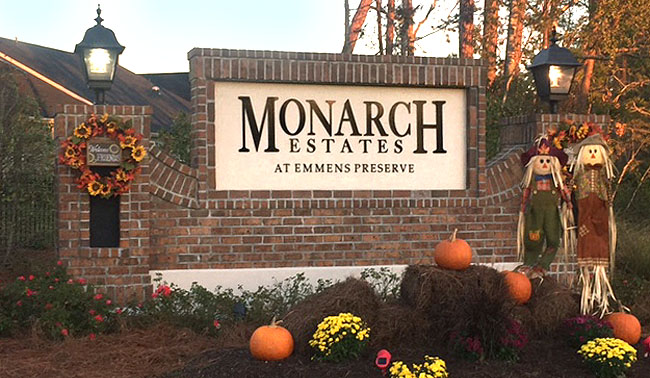 Homes for Sale in Monarch at Emmens Preserve