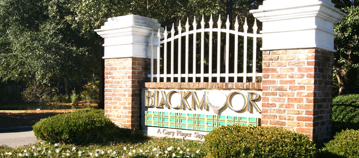 Homes for Sale in Blackmoor, Murrells Inlet
