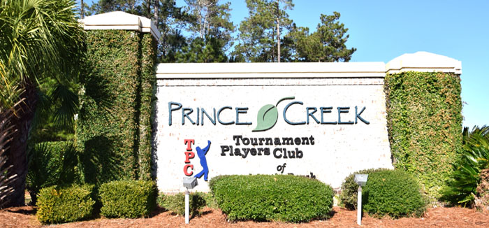 Homes for Sale in Prince Creek