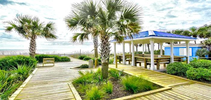 Ocean Forest Beach Cabana