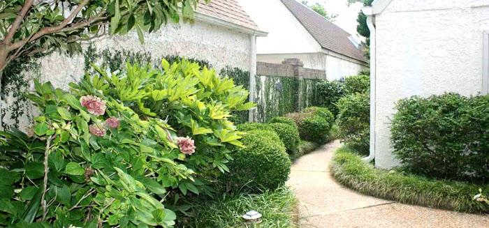 Antigua Landscaping
