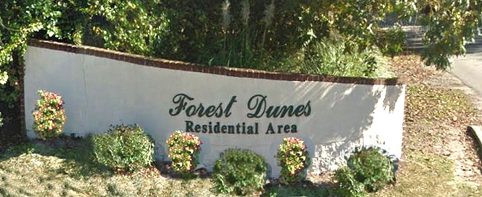 Homes for Sale in Forest Dunes